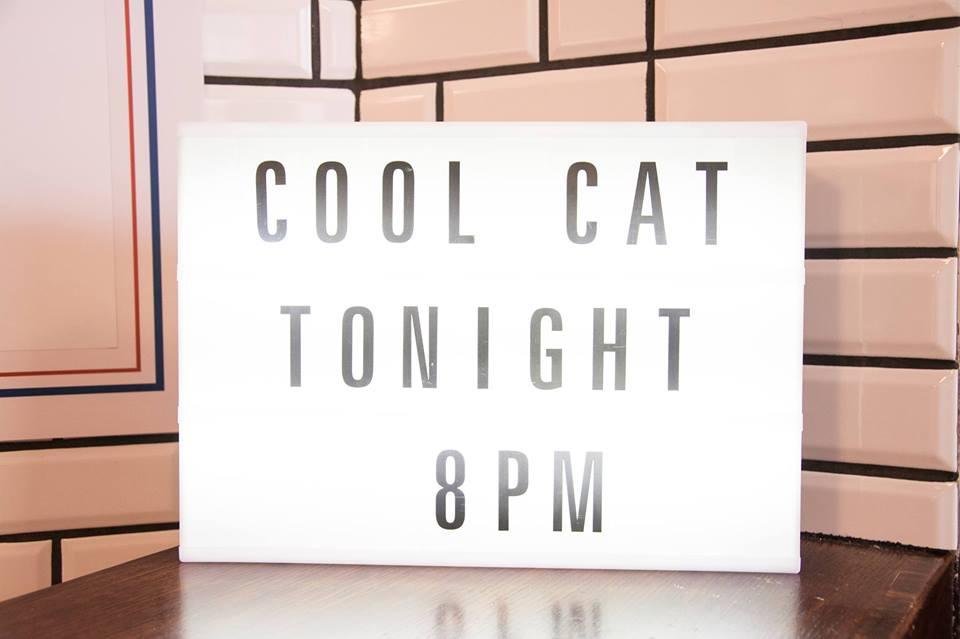 Cool Cat + Egzotyczny Dandys Paryskich Bulwarów