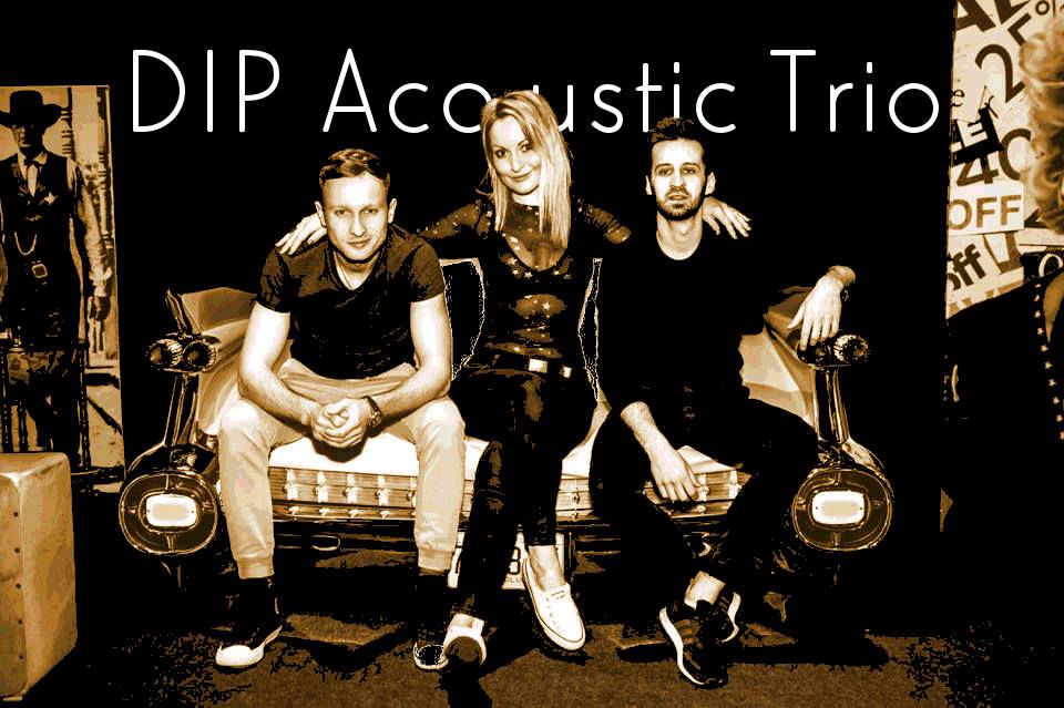 DIP Acoustic Trio