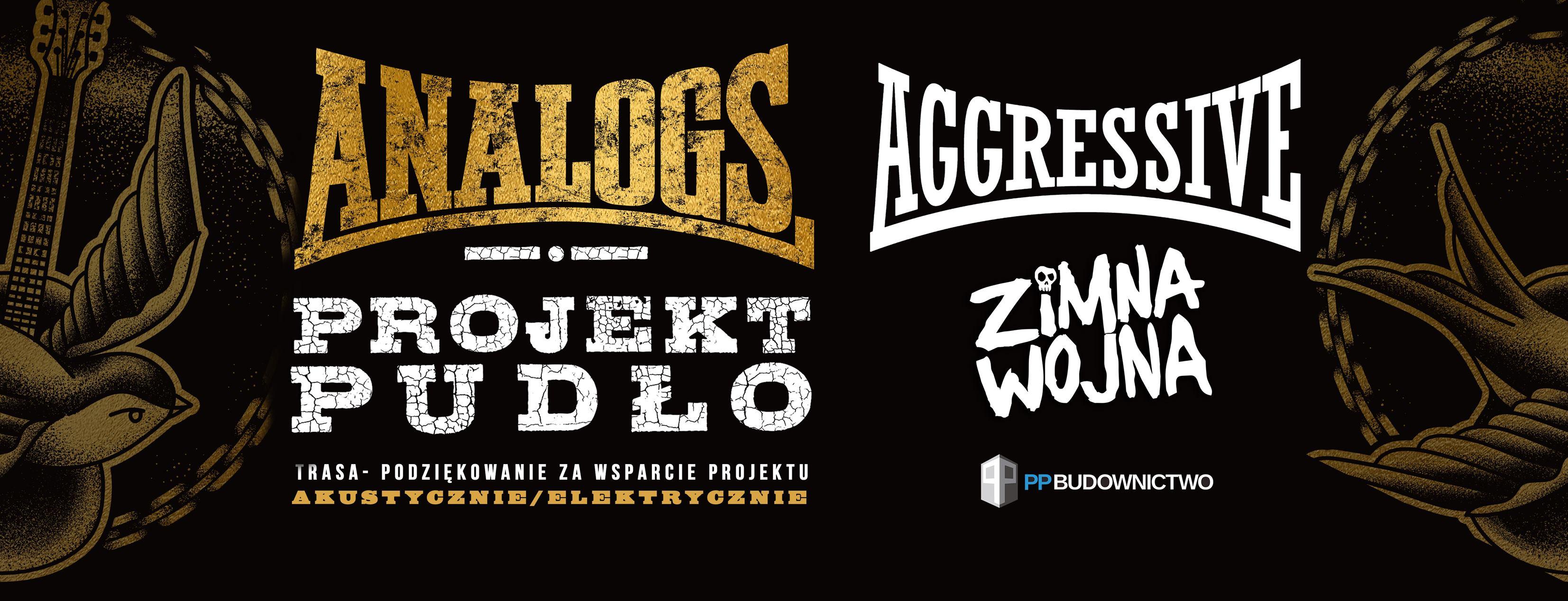 The Analogs: Projekt Pudło, Aggressive